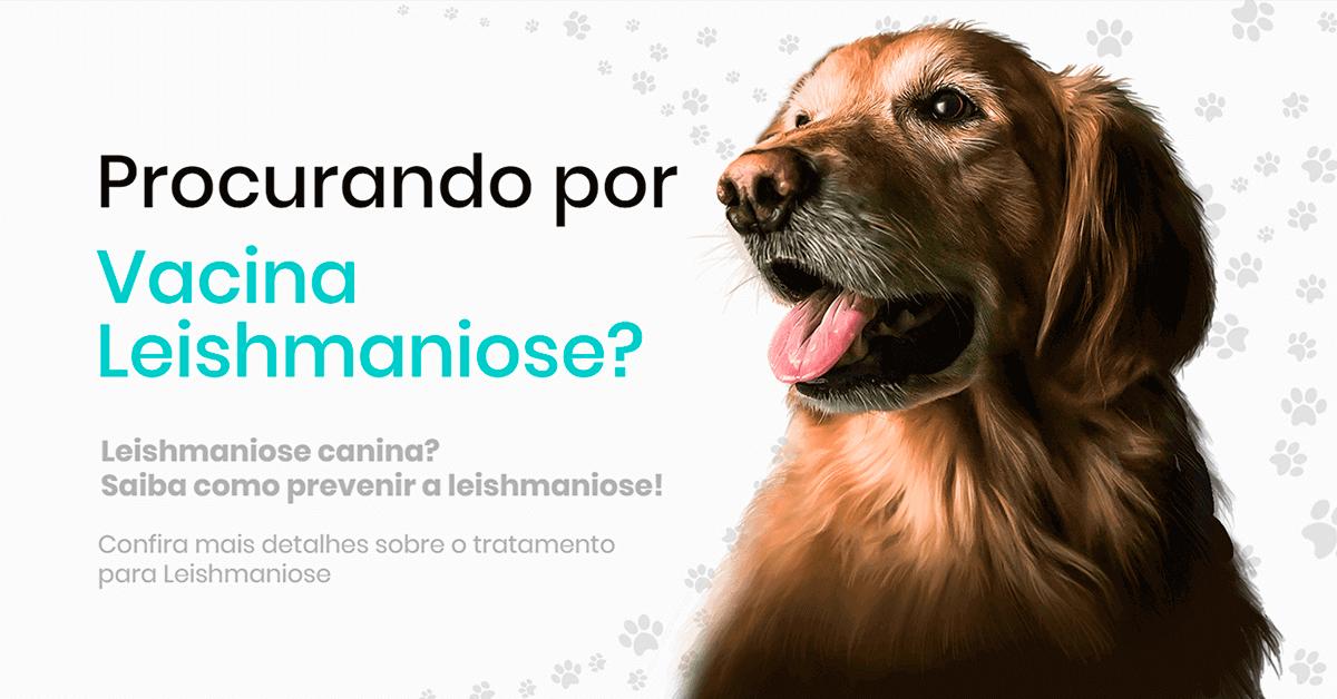 Projeto Vacinas Leishmaniose canina
